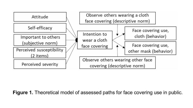 Researcher examines why individuals select to put on face coverings
